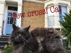 Flynn Richards 'New Cross Cat'