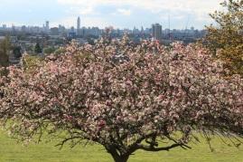 Hatty Uwanogho 'Blooming High'