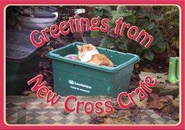 Mike Whelan 'New Cross Crate'